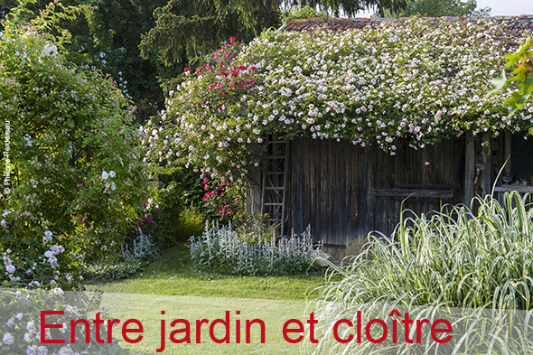 ©-Philippe-Perdereau---Jardin-entelouetnewsletter