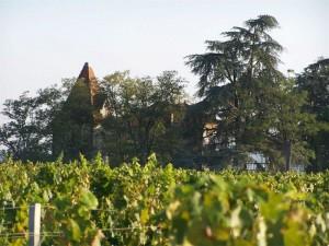 fronton vin toulouse visite vignoble sud ouest france les voyages duclos 01